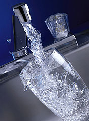 The Importance of Water Consumption