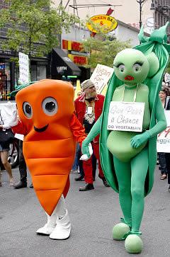 Vegetarianism Shrinks Your Brain